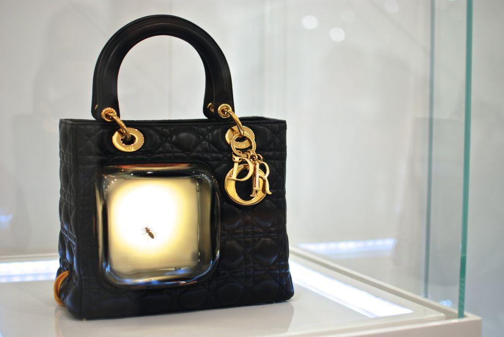 Paola Petrobelli - Bug's Bag, 2012