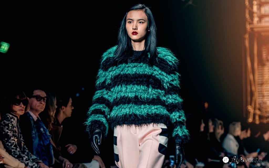 max mara fall winter 2016 2017 Faye Tsui 06